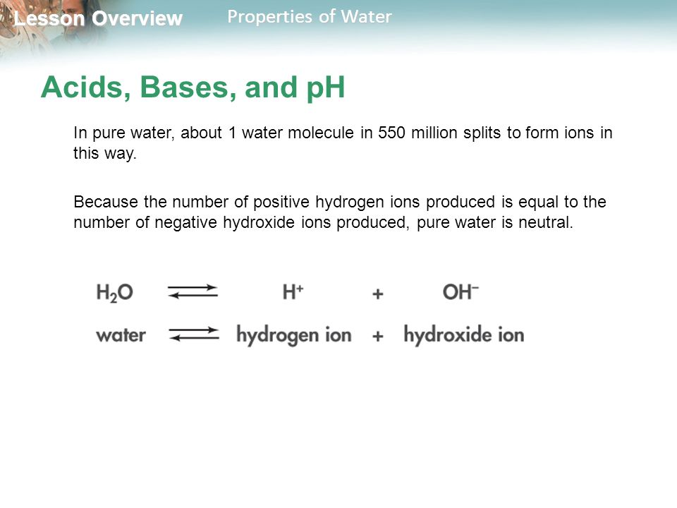 Lesson Overview Lesson Overview Properties of Water Lesson ...