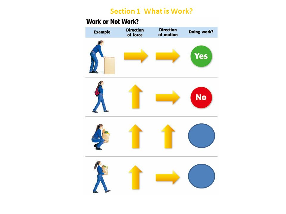 Section 1 What is Work Chapter 8