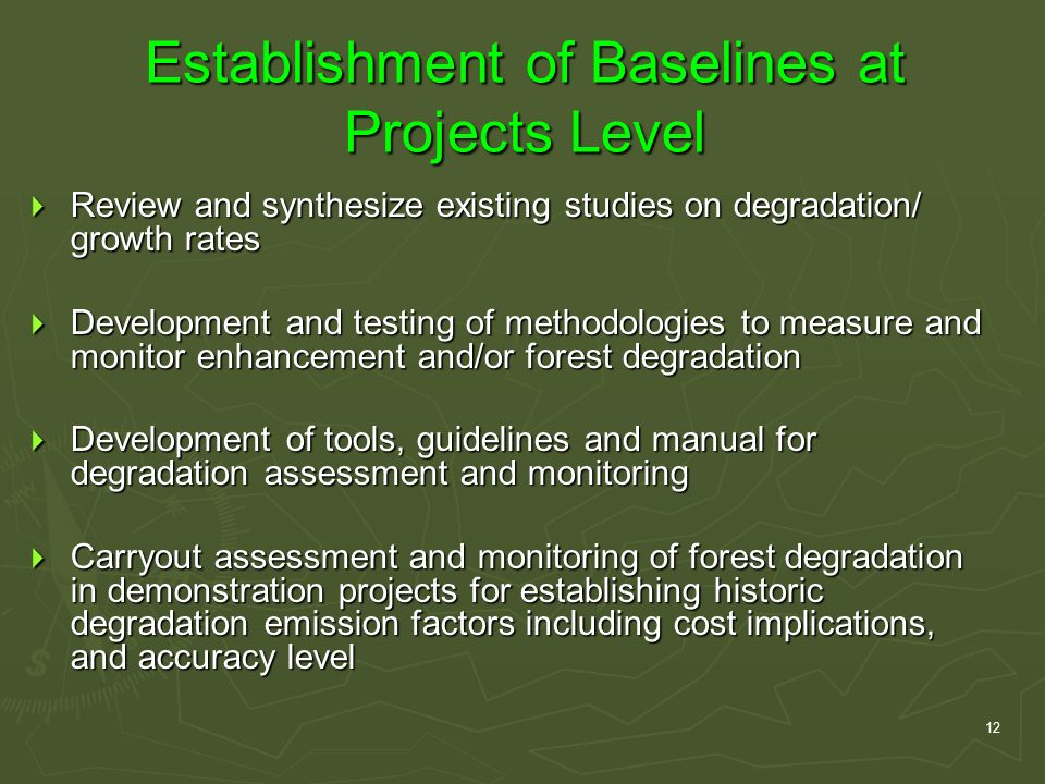 12 Establishment of Baselines at Projects Level  Review and synthesize existing studies on degradation/ growth rates  Development and testing of methodologies to measure and monitor enhancement and/or forest degradation  Development of tools, guidelines and manual for degradation assessment and monitoring  Carryout assessment and monitoring of forest degradation in demonstration projects for establishing historic degradation emission factors including cost implications, and accuracy level
