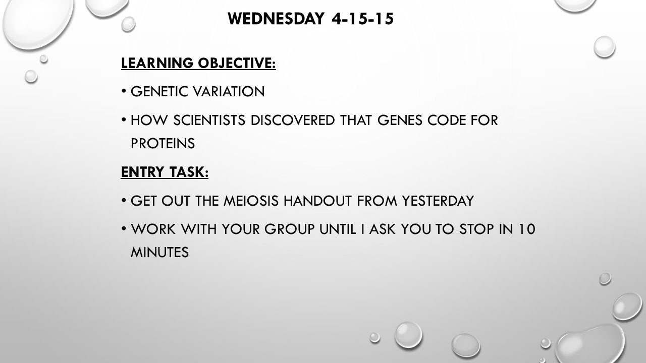worksheet Genetic Variation Worksheet wednesday learning objective genetic variation how scientists 1 wednesday