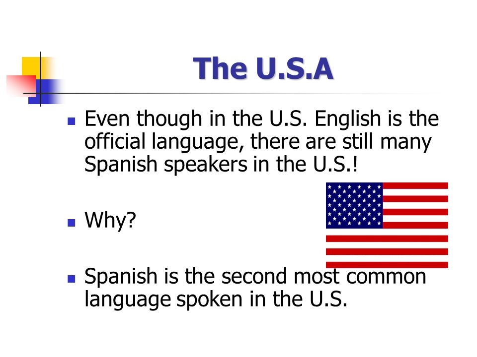 english as official language in us Most newcomers to the united states want to learn english and don't need to making english the official language contradicts us history.
