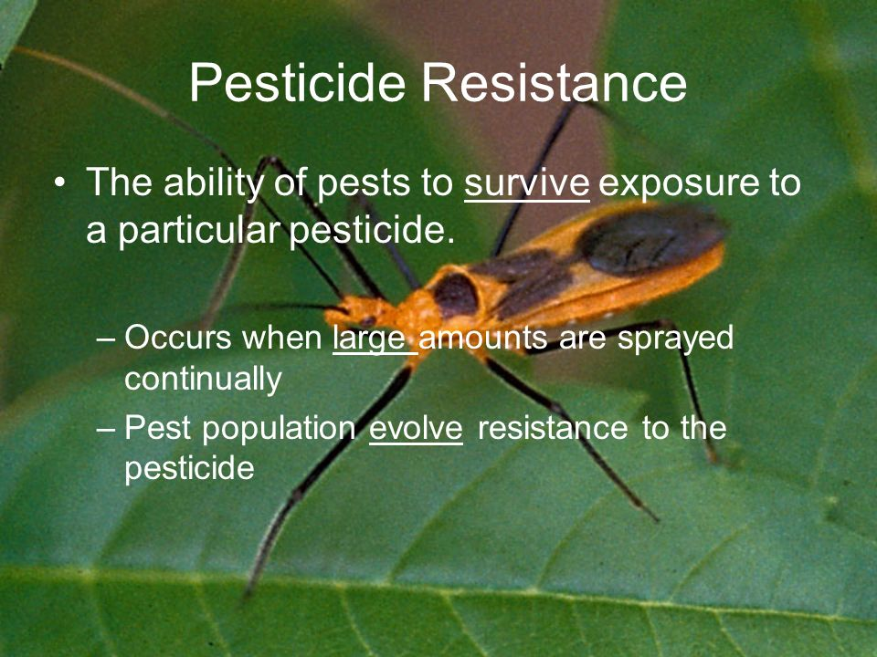 Pesticide Resistance The ability of pests to survive exposure to a particular pesticide.