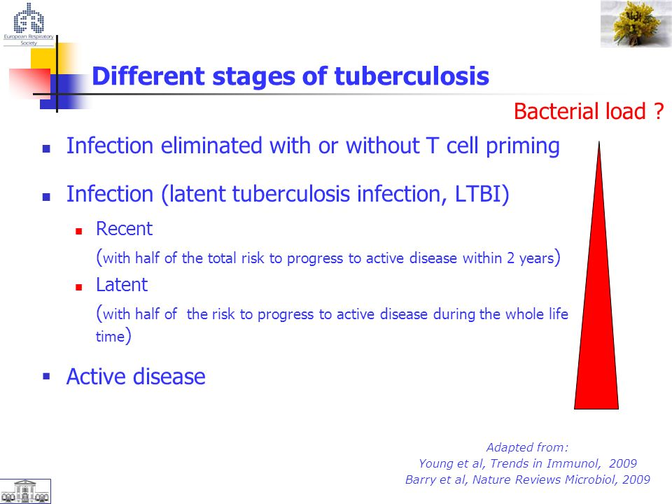 Different stages of tuberculosis Infection eliminated with or without T cell priming Infection (latent tuberculosis infection, LTBI) Recent ( with half of the total risk to progress to active disease within 2 years ) Latent ( with half of the risk to progress to active disease during the whole life time )  Active disease Bacterial load .