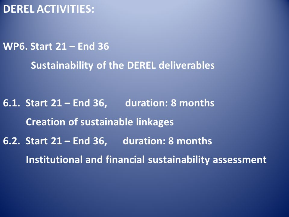 DEREL ACTIVITIES: WP6. Start 21 – End 36 Sustainability of the DEREL deliverables 6.1.