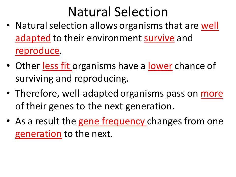 Evolution Natural Selection Worksheet Sharebrowse – Natural Selection Worksheet