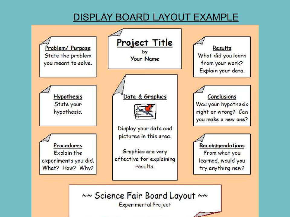 Science Fair Board Layout Nevsekapookco