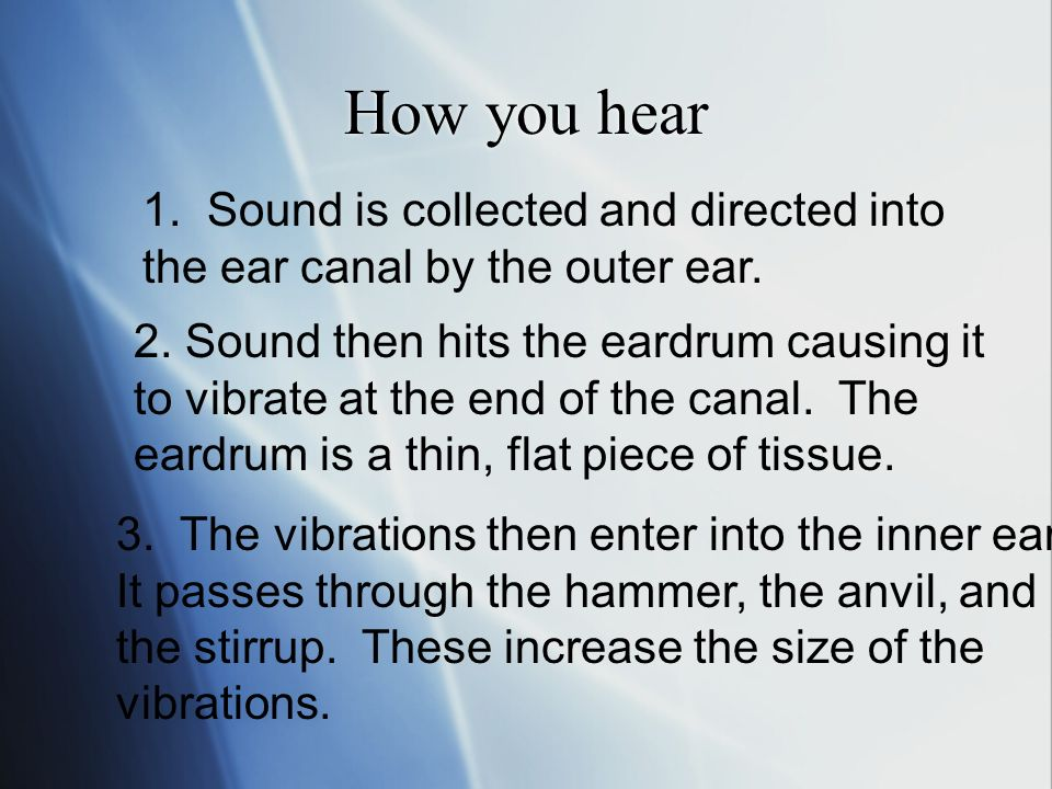 How you hear 1. Sound is collected and directed into the ear canal by the outer ear.