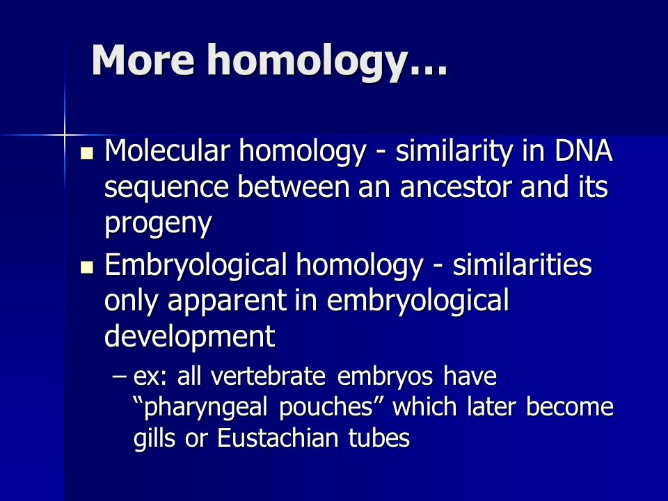 More homology… Molecular homology - similarity in DNA sequence between an ancestor and its progeny Molecular homology - similarity in DNA sequence between an ancestor and its progeny Embryological homology - similarities only apparent in embryological development Embryological homology - similarities only apparent in embryological development –ex: all vertebrate embryos have pharyngeal pouches which later become gills or Eustachian tubes