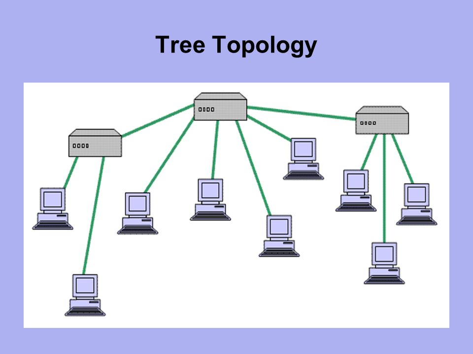 networking and support systems business and computer technology ii      tree topology