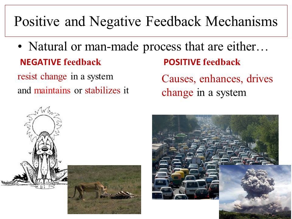 Positive and Negative Feedback Mechanisms Natural or man-made process that are either… NEGATIVE feedback POSITIVE feedback resist change in a system and maintains or stabilizes it Causes, enhances, drives change in a system