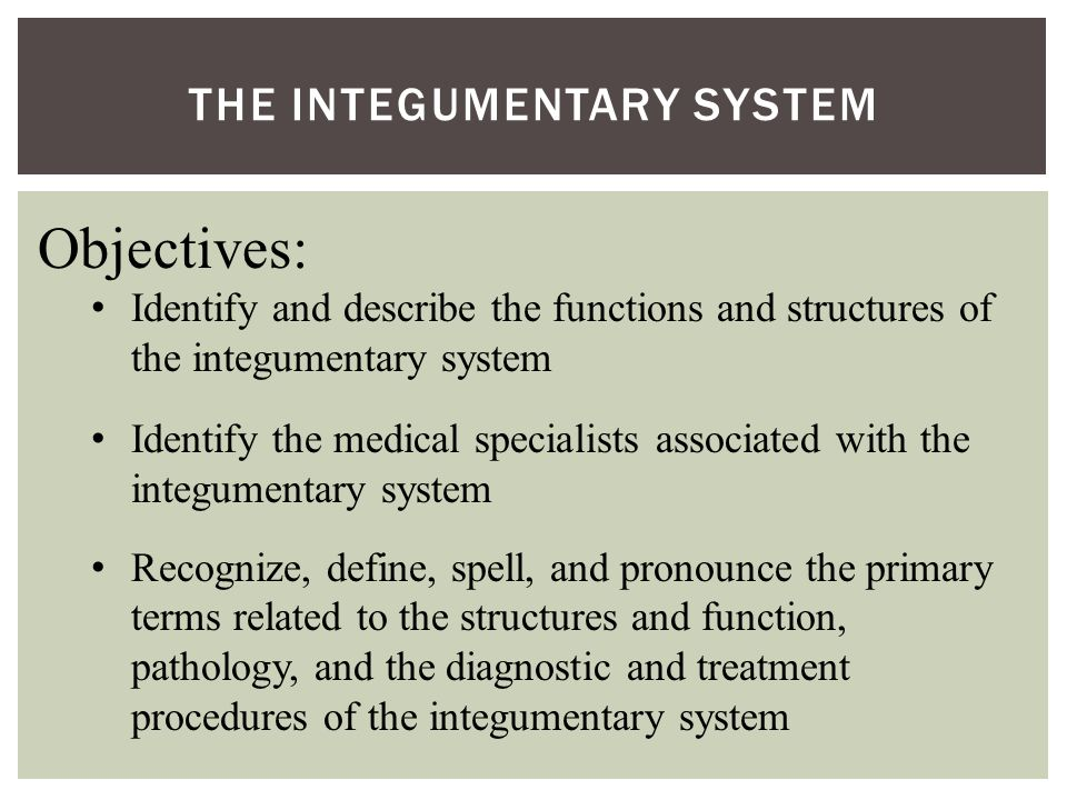 THE INTEGUMENTARY SYSTEM Objectives: Identify and describe the functions and structures of the integumentary system Identify the medical specialists associated with the integumentary system Recognize, define, spell, and pronounce the primary terms related to the structures and function, pathology, and the diagnostic and treatment procedures of the integumentary system