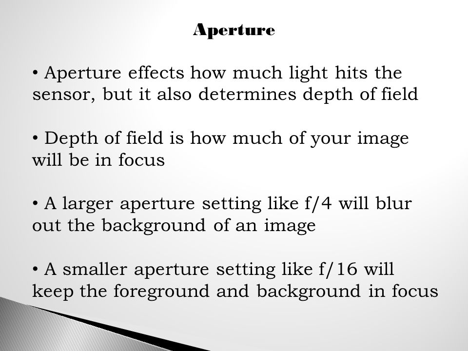Aperture Aperture effects how much light hits the sensor, but it also determines depth of field Depth of field is how much of your image will be in focus A larger aperture setting like f/4 will blur out the background of an image A smaller aperture setting like f/16 will keep the foreground and background in focus