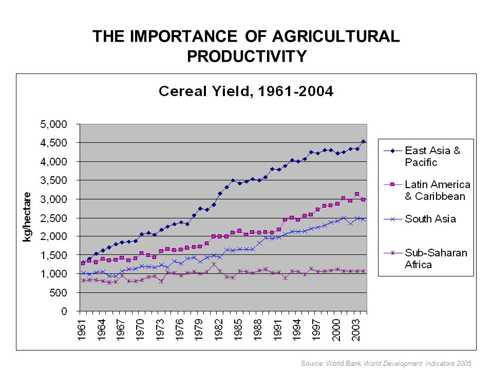 THE IMPORTANCE OF AGRICULTURAL PRODUCTIVITY Source: World Bank World Development Indicators 2005