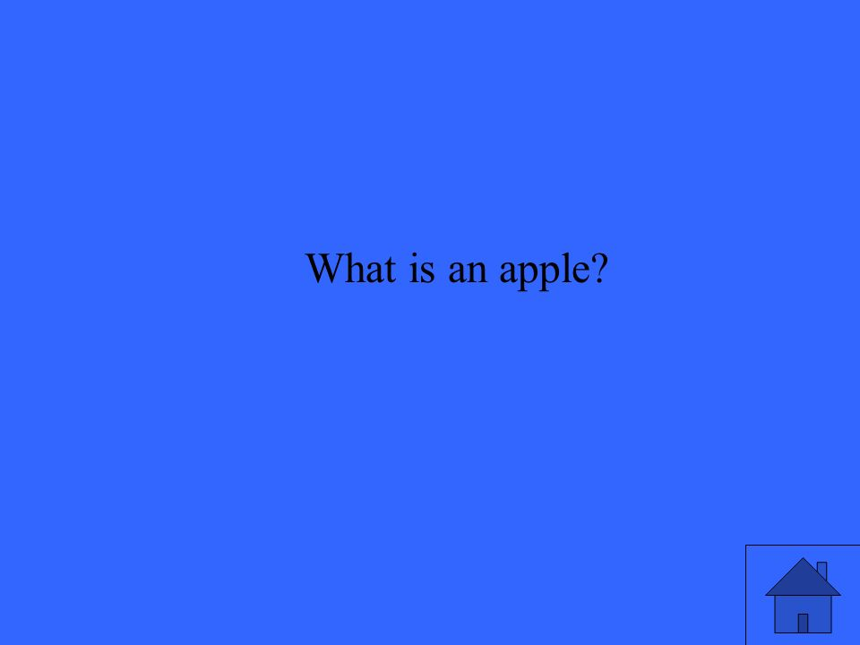 What is an apple