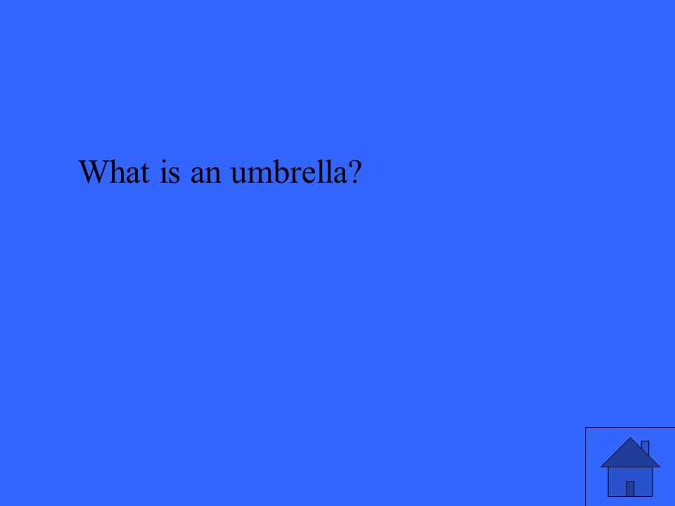 What is an umbrella