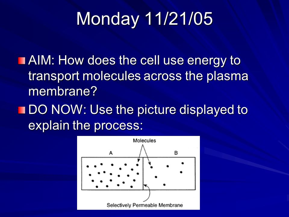 Monday 11/21/05 AIM: How does the cell use energy to transport molecules across the plasma membrane.