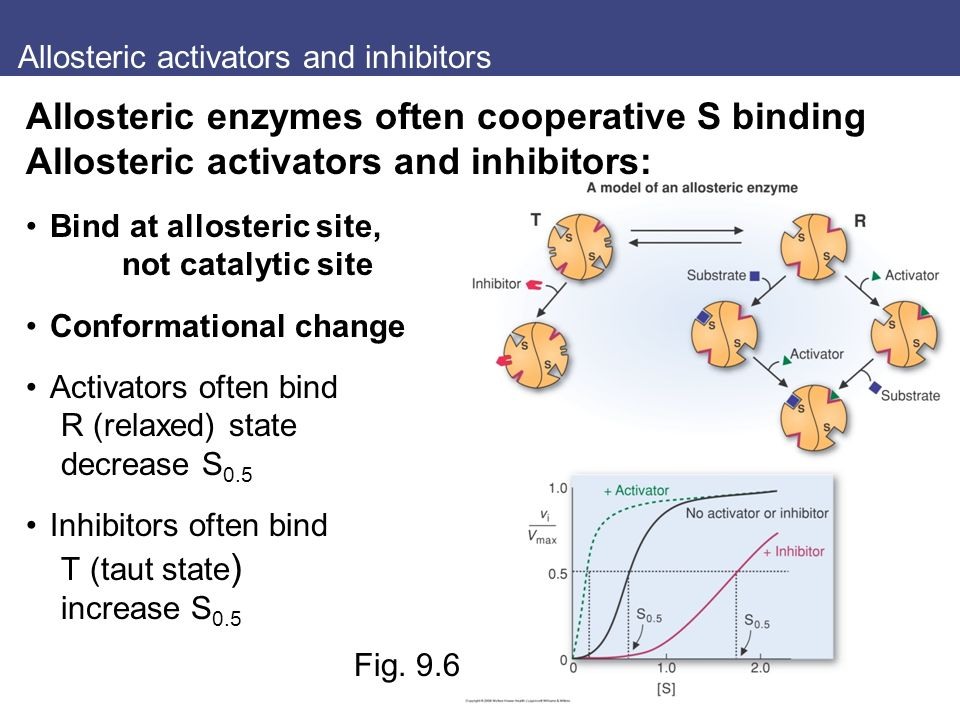 Allosteric activators and inhibitors Fig.