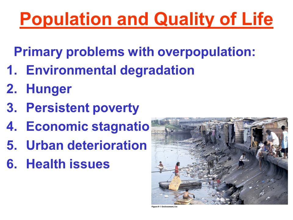 What role does social welfare in overpopulation problems?