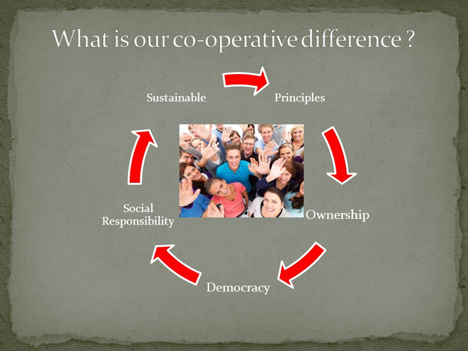 Principles Ownership Democracy Social Responsibility Sustainable