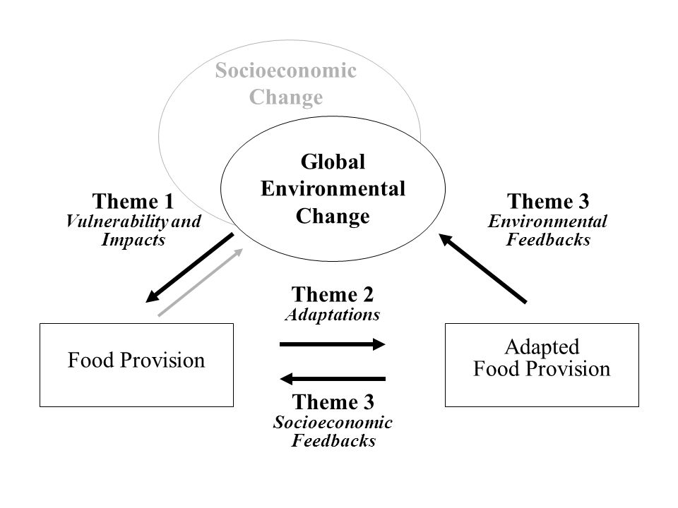 Global Environmental Change Food Provision Theme 1 Vulnerability and Impacts Theme 2 Adaptations Adapted Food Provision Theme 3 Environmental Feedbacks Socioeconomic Change Theme 3 Socioeconomic Feedbacks