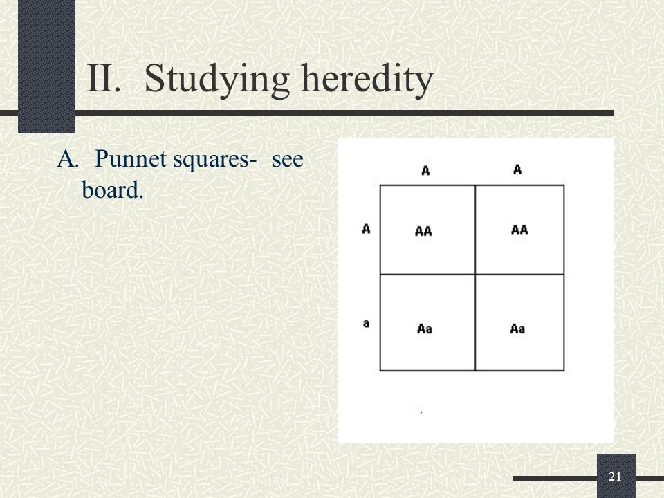 21 II. Studying heredity A. Punnet squares- see board.