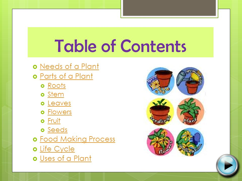 Table of Contents  Needs of a Plant Needs of a Plant  Parts of a Plant Parts of a Plant  Roots Roots  Stem Stem  Leaves Leaves  Flowers Flowers  Fruit Fruit  Seeds Seeds  Food Making Process Food Making Process  Life Cycle Life Cycle  Uses of a Plant Uses of a Plant