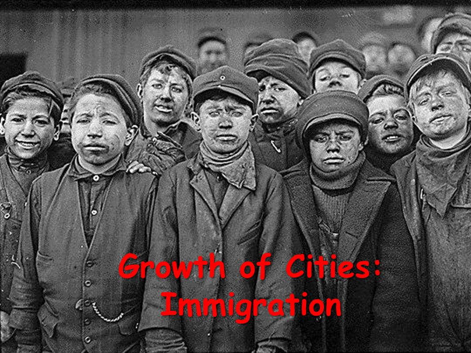 Growth of Cities: Immigration