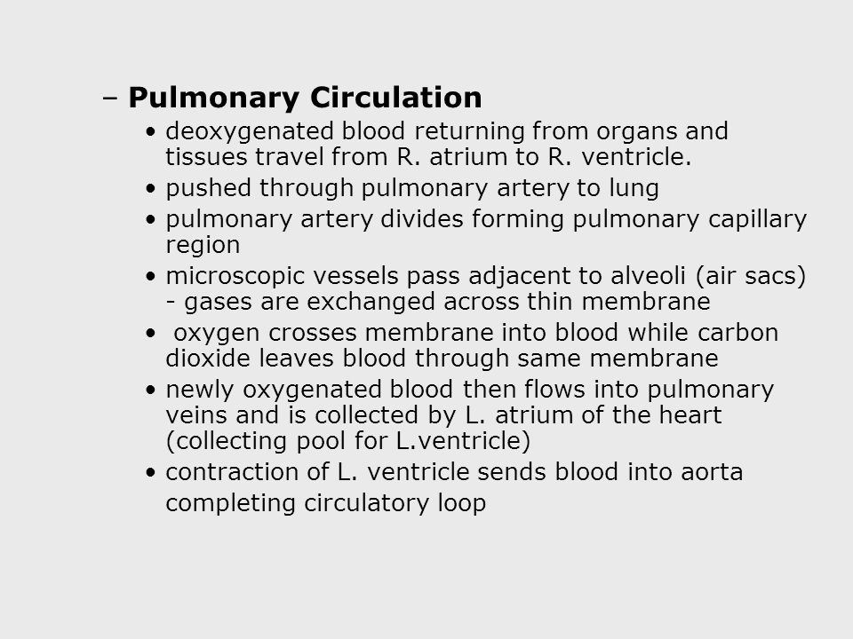 –Pulmonary Circulation deoxygenated blood returning from organs and tissues travel from R.