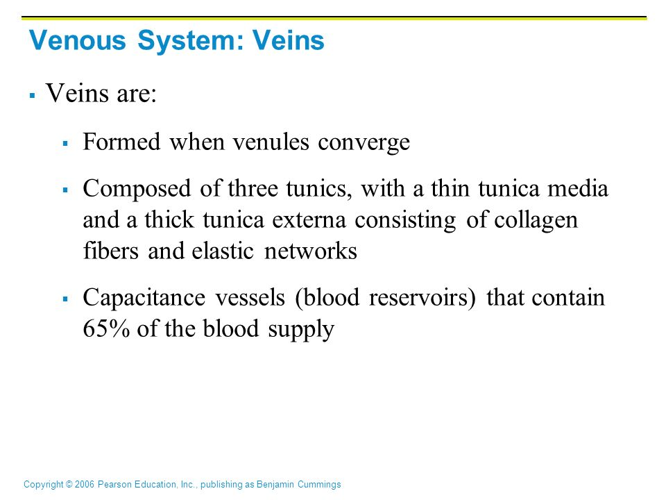 Copyright © 2006 Pearson Education, Inc., publishing as Benjamin Cummings Venous System: Veins  Veins are:  Formed when venules converge  Composed