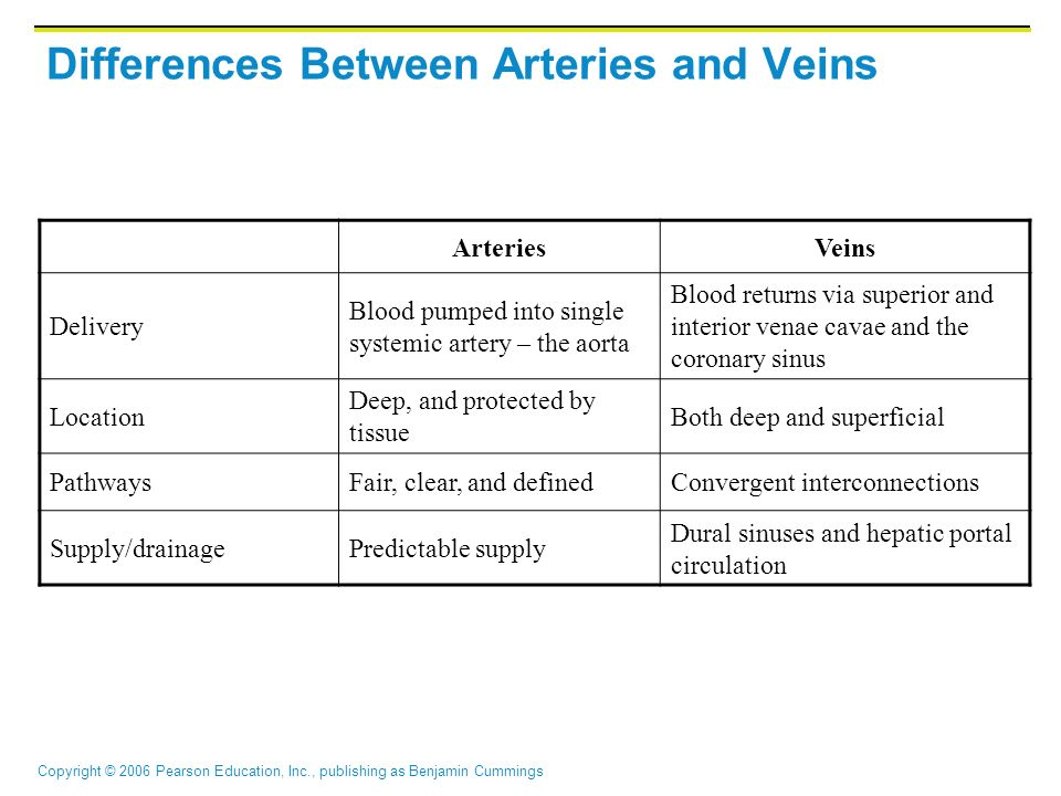 Copyright © 2006 Pearson Education, Inc., publishing as Benjamin Cummings Differences Between Arteries and Veins ArteriesVeins Delivery Blood pumped i