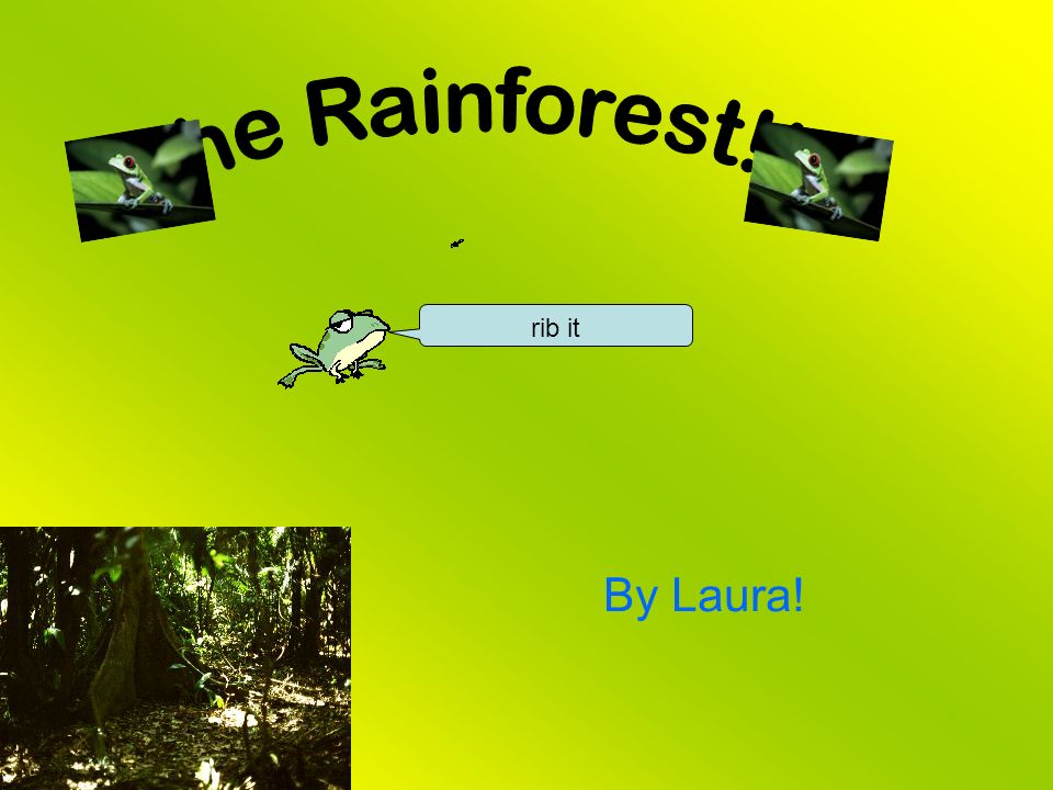 rainforest speech Deforestation occurs in rainforest every day, destroying 80 acres every minute well being and all of its inhabitants to take a stand to stop deforestation.