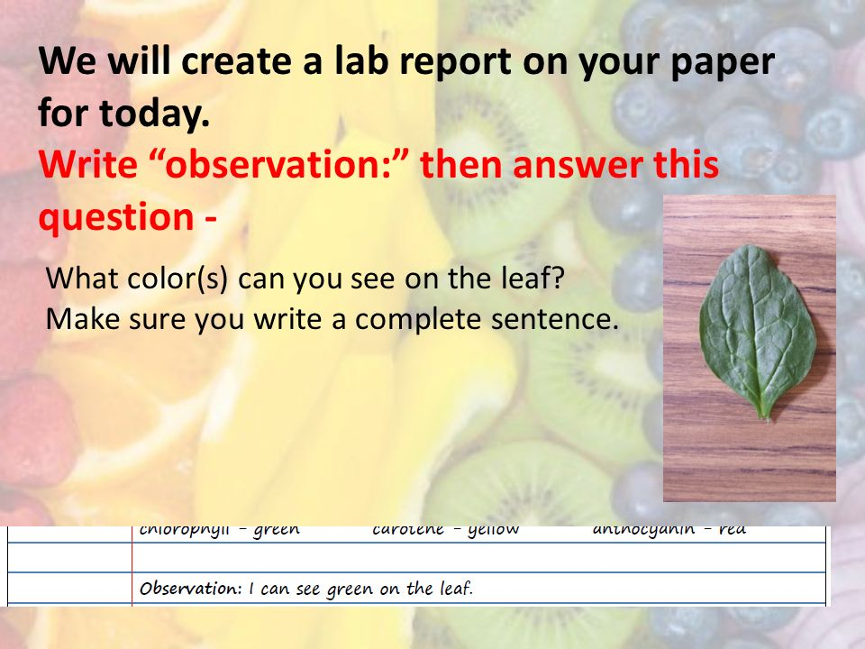 Tips on Writing Lab Reports