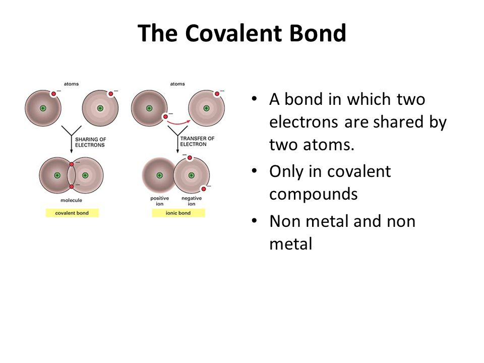 The Covalent Bond A bond in which two electrons are shared by two atoms.