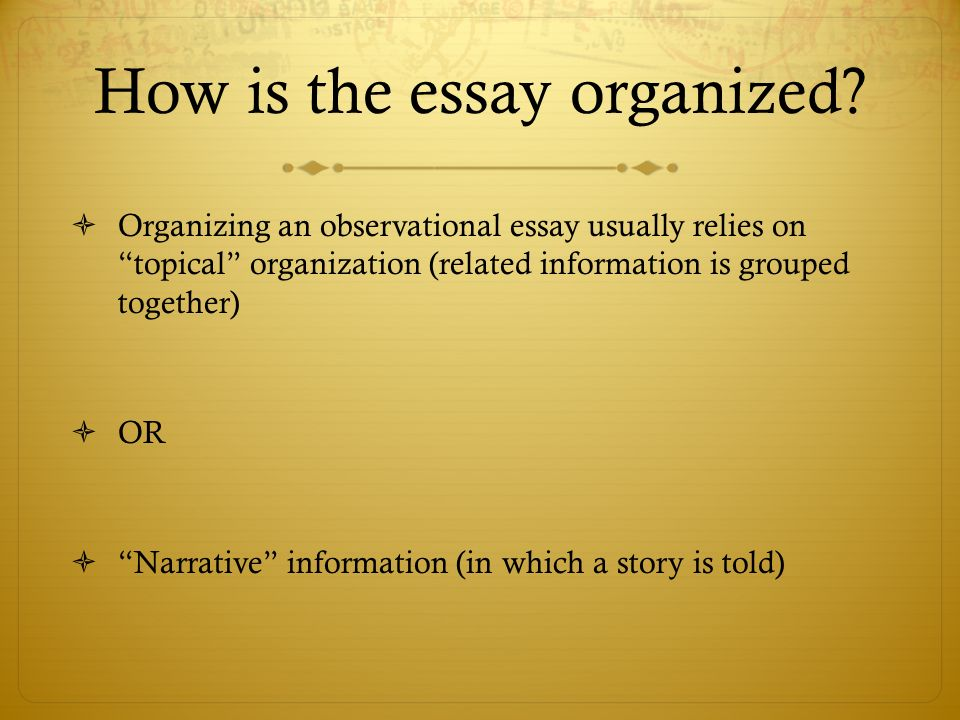 Observation Essay Examples