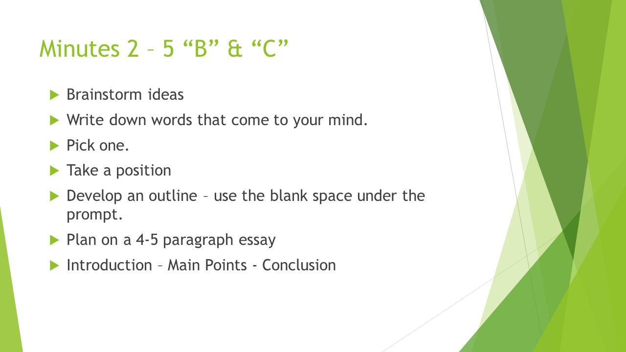 main idea writer discusses essay