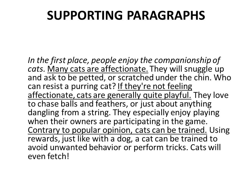 essay about cats how to write an informative essayworld of  persuasive essay introduction quot a dog is man s best friend quot that supporting paragraphs in