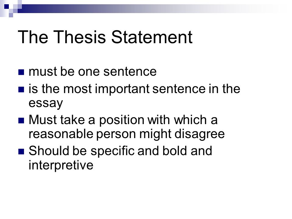 The Parts Of An Essay Your Guide To Writing Strong Academic Essays   The Thesis Statement Must Be