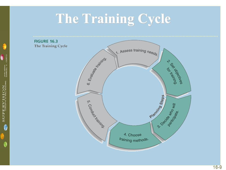 16-9 The Training Cycle