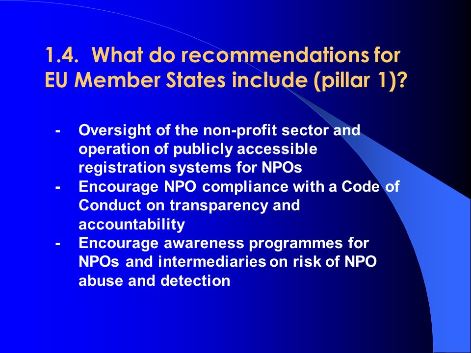 1.4. What do recommendations for EU Member States include (pillar 1).