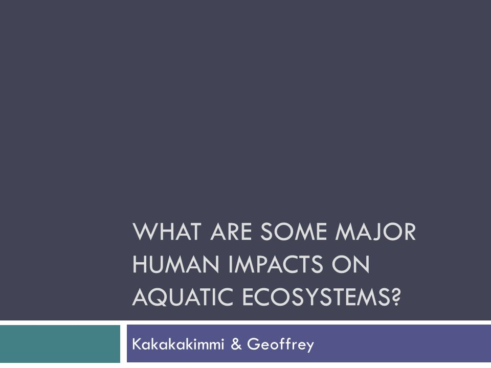 WHAT ARE SOME MAJOR HUMAN IMPACTS ON AQUATIC ECOSYSTEMS Kakakakimmi & Geoffrey