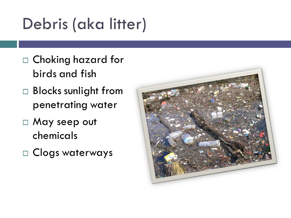 Debris (aka litter)  Choking hazard for birds and fish  Blocks sunlight from penetrating water  May seep out chemicals  Clogs waterways