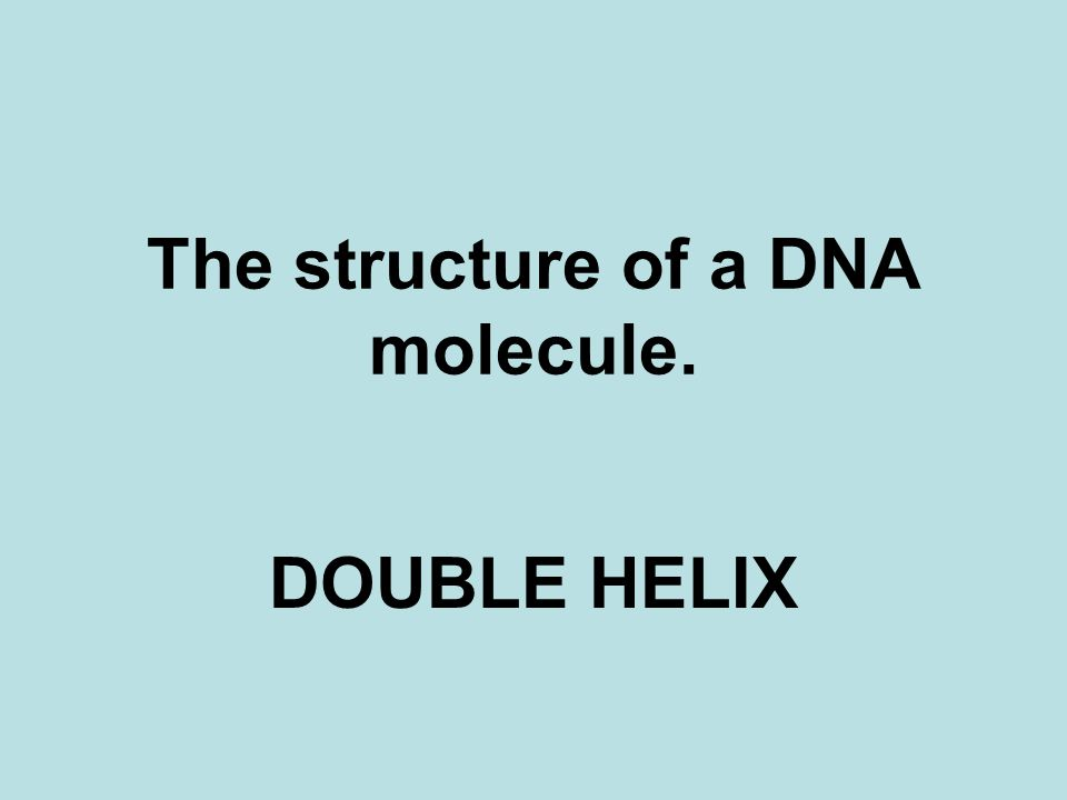 The structure of a DNA molecule. DOUBLE HELIX