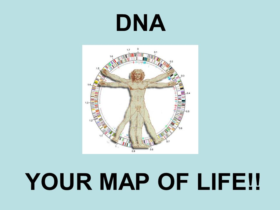 DNA YOUR MAP OF LIFE!!