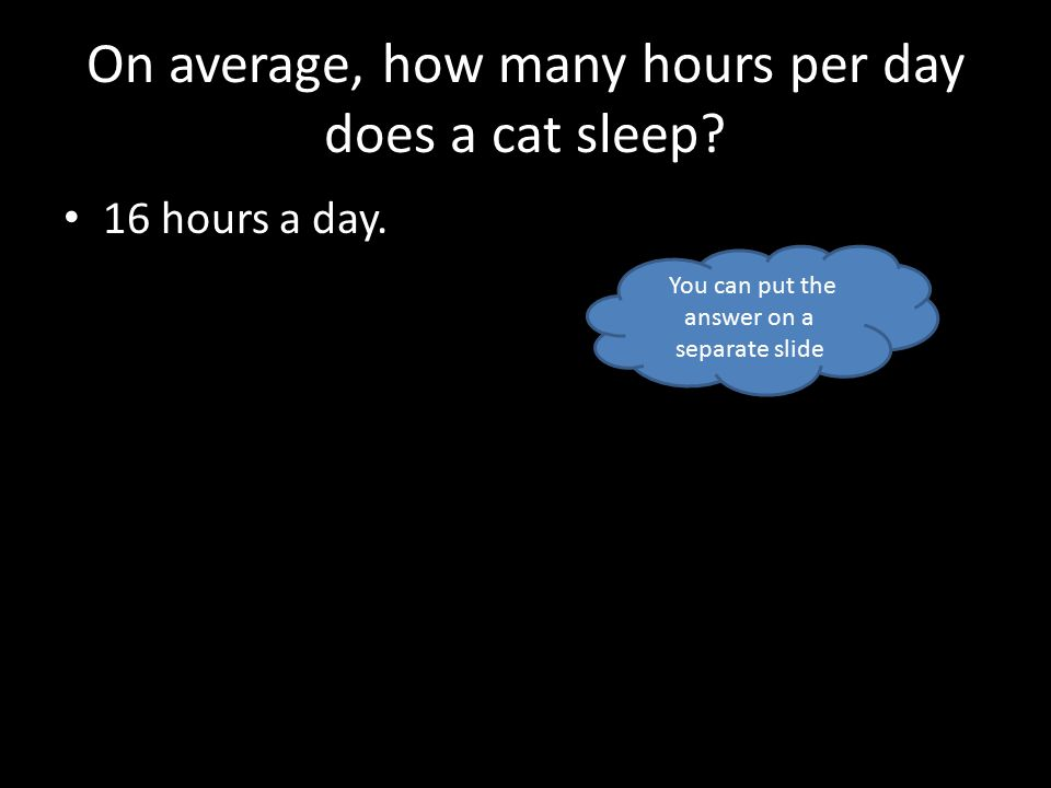 On average, how many hours per day does a cat sleep.