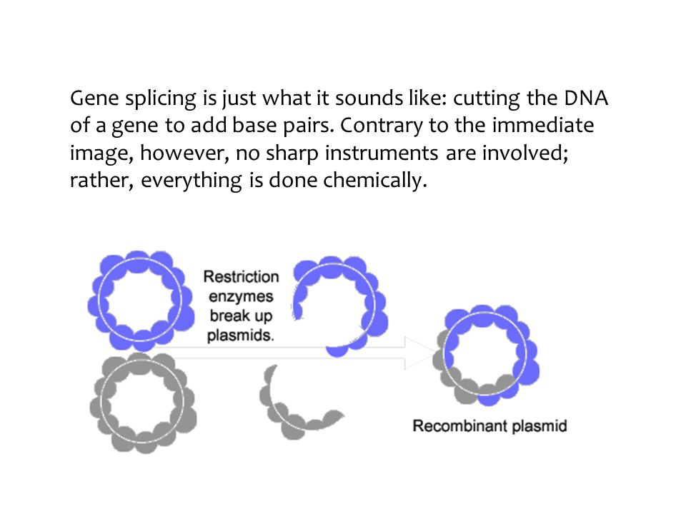 Biotechnology gene the unit of inherited information in dna gene 9 gene splicing ccuart Gallery
