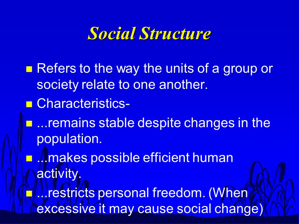 Social Structure n Refers to the way the units of a group or society relate to one another.