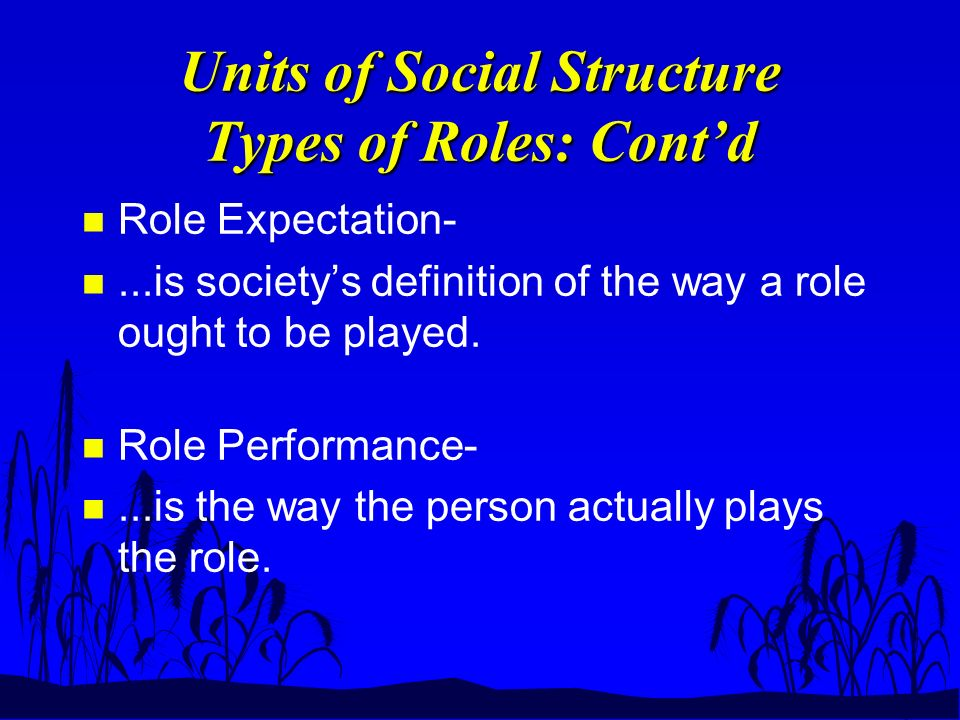 Units of Social Structure Types of Roles: Cont'd n Role Expectation- n...is society's definition of the way a role ought to be played.