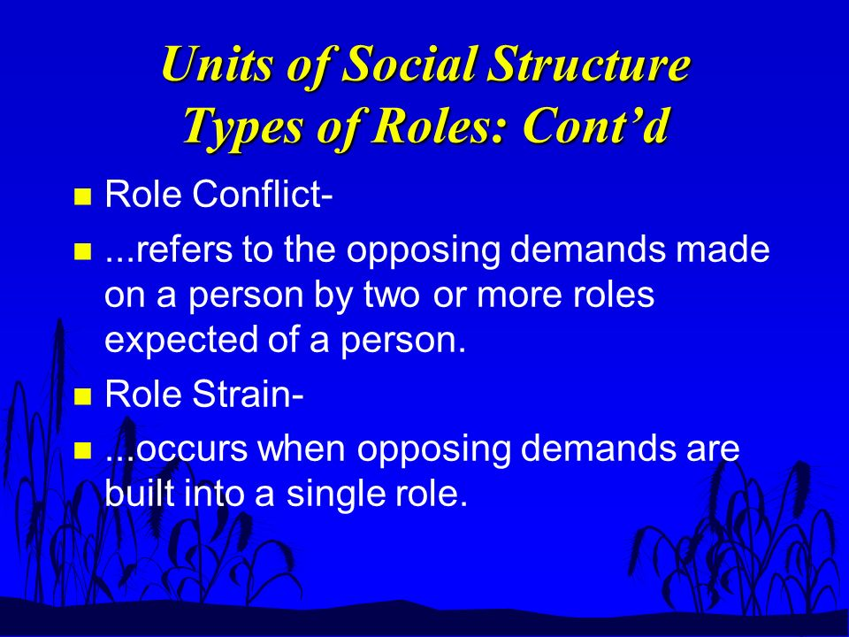 Units of Social Structure Types of Roles: Cont'd n Role Conflict- n...refers to the opposing demands made on a person by two or more roles expected of a person.