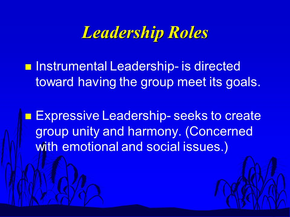 Leadership Roles n Instrumental Leadership- is directed toward having the group meet its goals.