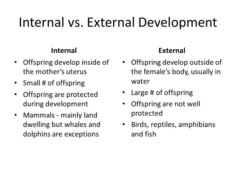 external fertilization